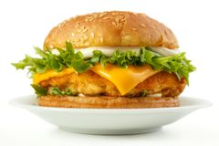 Fish burger. With cheese and mayonnaise on dish, white background Royalty Free Stock Photos