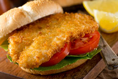 Fish Burger. A delicious homemade fish burger with lettuce and tomato on a bun Stock Photos