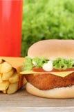 Fish burger fishburger hamburger and fries menu meal combo fast. Food cola drink Stock Image