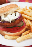 Fish burger with french fries Royalty Free Stock Photo