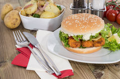 Fish Burger with fried Potatoes in a bowl Royalty Free Stock Image