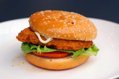 Fish burger on plate Stock Photos