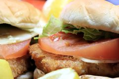 Fish burger seafood sandwich Royalty Free Stock Photos