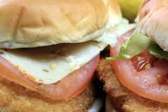 Fish burger seafood sandwich Royalty Free Stock Photography