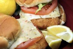 Fish burger seafood sandwich Royalty Free Stock Image