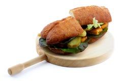 Fish Burgers Royalty Free Stock Photo