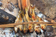 Fish burned. The fish burned to make some food Stock Image