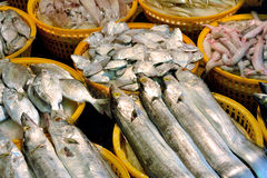 Fish business. Kinds of fish selling in market, shown as different, various and market business dealing Royalty Free Stock Photos