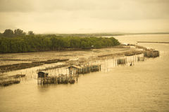 Fish cage in the sea. Stock Photo