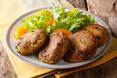 Fish cake patties of canned tuna with fresh vegetable salad clo. Se-up on a plate on a table. Horizontal royalty free stock images