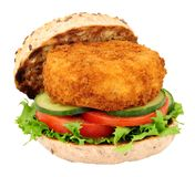 Fish Cake Sandwich. Breadcrumb covered fish cake and salad sandwich isolated on a white background Royalty Free Stock Image