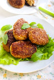 Fish cakes Stock Images