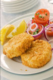 Fish Cakes on a Plate. Two fish cakes on a plate with salad and sliced lemons royalty free stock photos