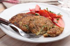Fish cakes with salad Royalty Free Stock Image