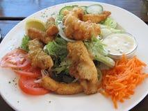 Fish and Calamari Dinner Stock Photography