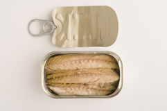Fish in a can Stock Photography