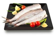 Fish carcass Royalty Free Stock Photos