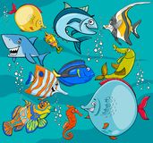 Fish cartoon characters group. Cartoon Illustrations of Funny Fish Sea Life Animal Characters Group Stock Images