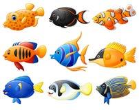 Fish cartoon set Royalty Free Stock Photos