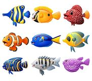 Fish cartoon set. Illustration of fish cartoon set Stock Photography