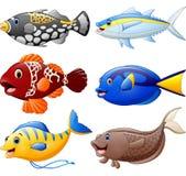 Fish cartoon set Stock Photo