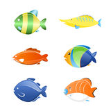 Fish cartoon set. Of tropical fish - vector Illustration icons Stock Images