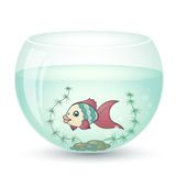 Fish in cartoon style. In an aquarium with algae Royalty Free Stock Photography