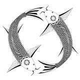 Fish. Cartoon fish on white background Royalty Free Stock Photo