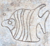 Fish carved on cement floor. Closeup fish carved on cement floor background Stock Image