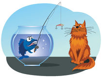 Fish catches a cat. From a fishbowl using a rod with a lure Stock Images