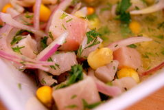 Fish Ceviche. White fish marinated in lemon, onion, corn and coriander Stock Images
