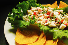 Fish Ceviche Stock Images