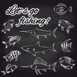 Fish on chalkboard and text Stock Photography