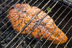 Fish char-grilled over flame Royalty Free Stock Image
