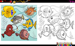 Fish characters coloring page. Cartoon Illustration of Fish Sea Life Animal Characters Coloring Book Activity Royalty Free Stock Photography