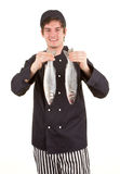 Fish chef Stock Photography