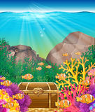 Fish and chest under the ocean. Illustration Stock Photo