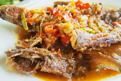 Fish chili sauce Royalty Free Stock Photography