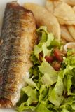 Fish&Chips Closeup Royalty Free Stock Photos