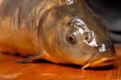 fish on a chopping board Royalty Free Stock Photo