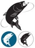 Fish chub. The figure shows a fish chub Royalty Free Stock Image