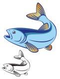 Fish chub. The figure shows the fish chub Royalty Free Stock Photography