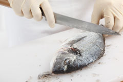 Fish cleaning Royalty Free Stock Images