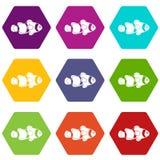 Fish clown icon set color hexahedron. Fish clown icon set many color hexahedron isolated on white vector illustration Stock Photo