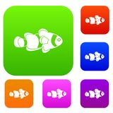 Fish clown set color collection. Fish clown set icon color in flat style isolated on white. Collection sings vector illustration Stock Photography