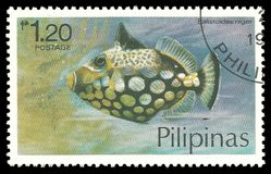 Fish, Clown Triggerfish. Philippines - stamp 1978, Multicolor Edition Marine Fauna, Series Fish, Clown Triggerfish, Balistoides niger Stock Photos