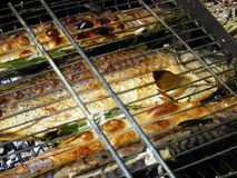 Fish on coals. Fish in the lattice is prepared over charcoal with herbs and spices Royalty Free Stock Photos