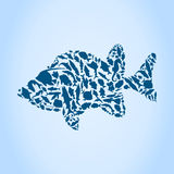 Silhouette fish Stock Photography