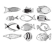 Fish collection. Black and white fish collection, vector illustration Royalty Free Stock Photo