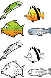 Fish collection coloring book. Cartoon  coloring book illustration of a fish collection Stock Photos